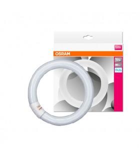 TUBO CIRCULAR LED ST9-22 12W 865 OSRAM
